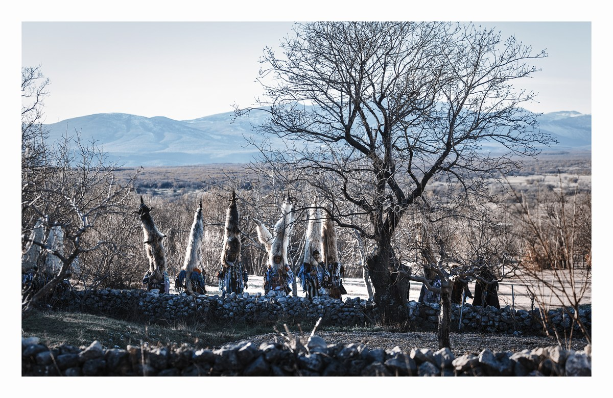 Dalmatinska zagora, didi, foto Milan Šabić