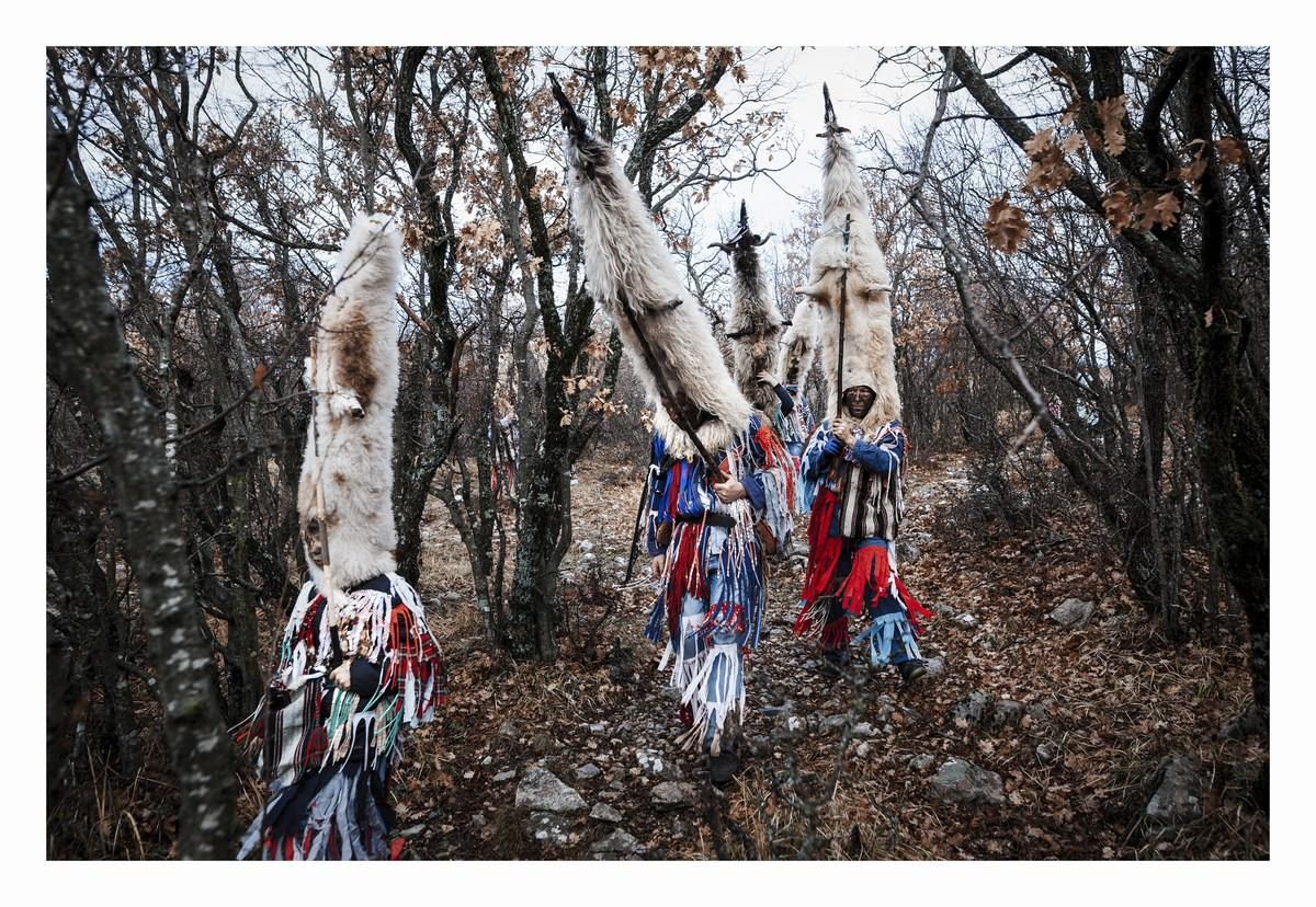 Didi v gozdu, foto Milan Šabić
