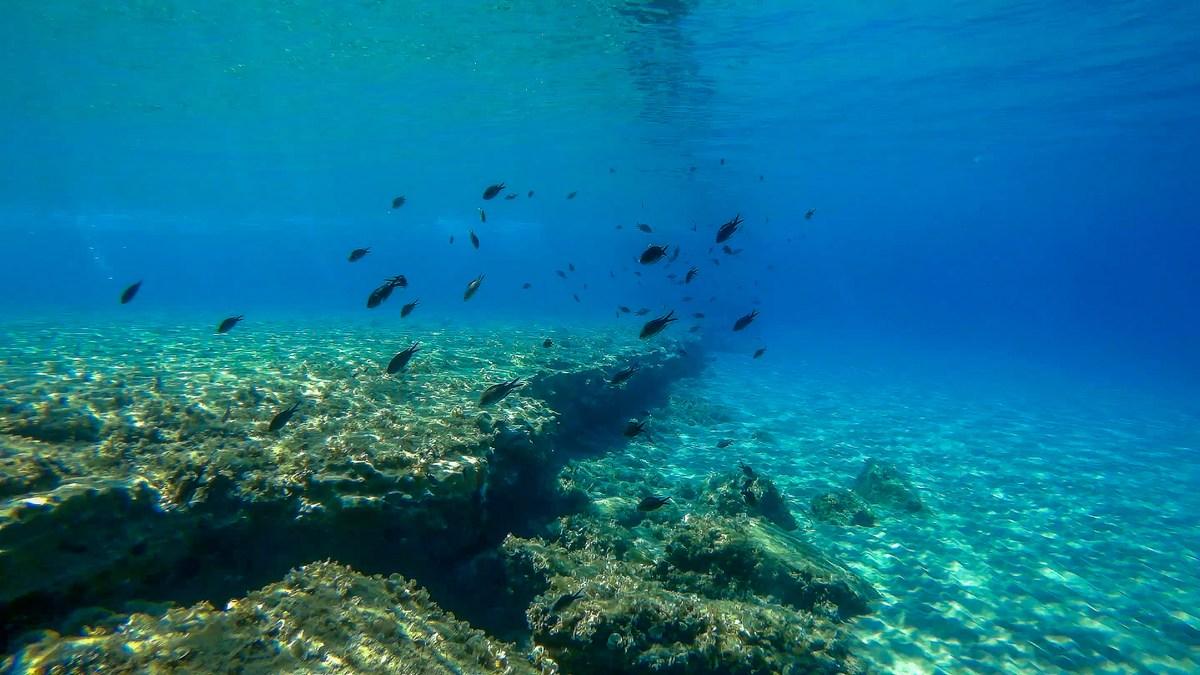 Podmorje Pržina