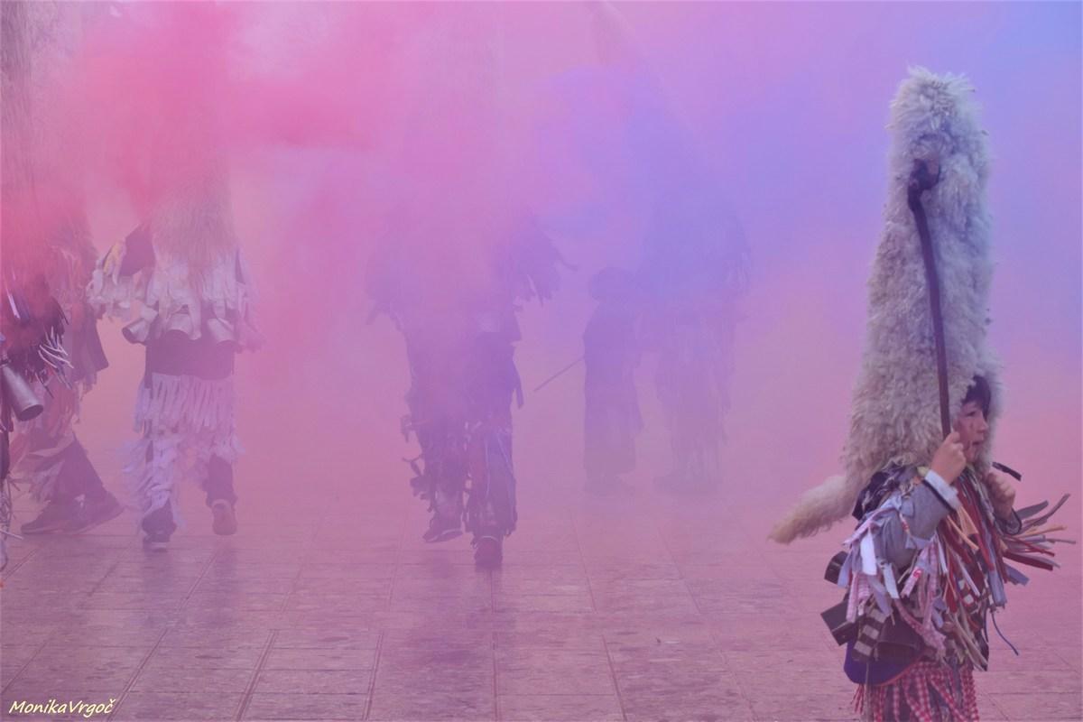 Vjola dim, foto Monika Vrgoč
