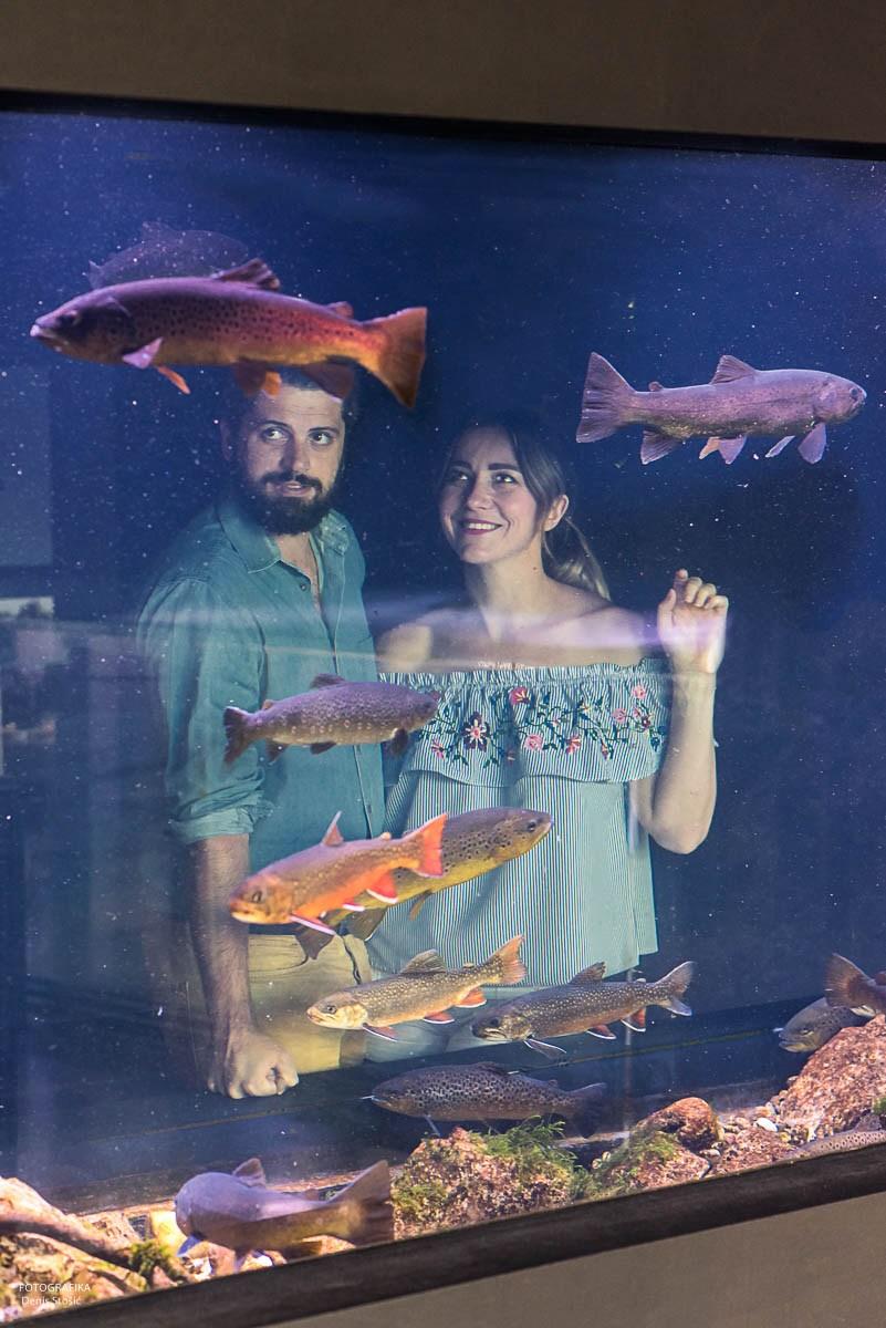 Akvarij, foto Denis Stošić