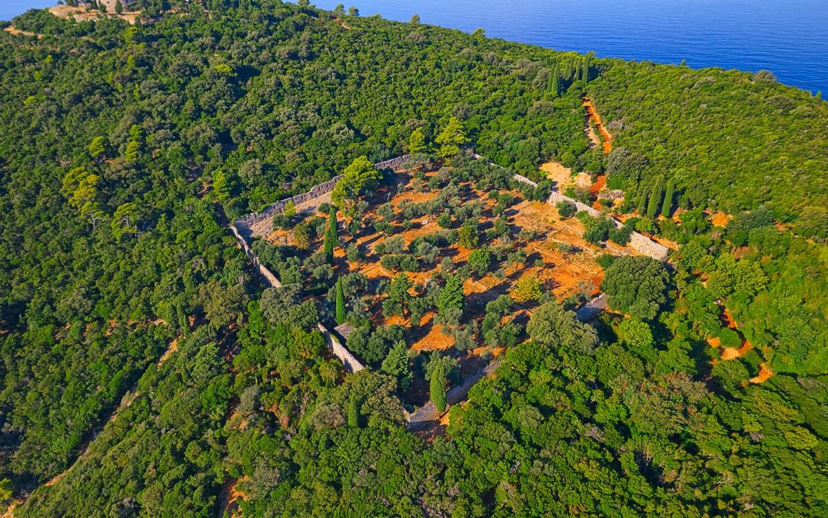 Bujna narava, foto TZ Dubrovnik
