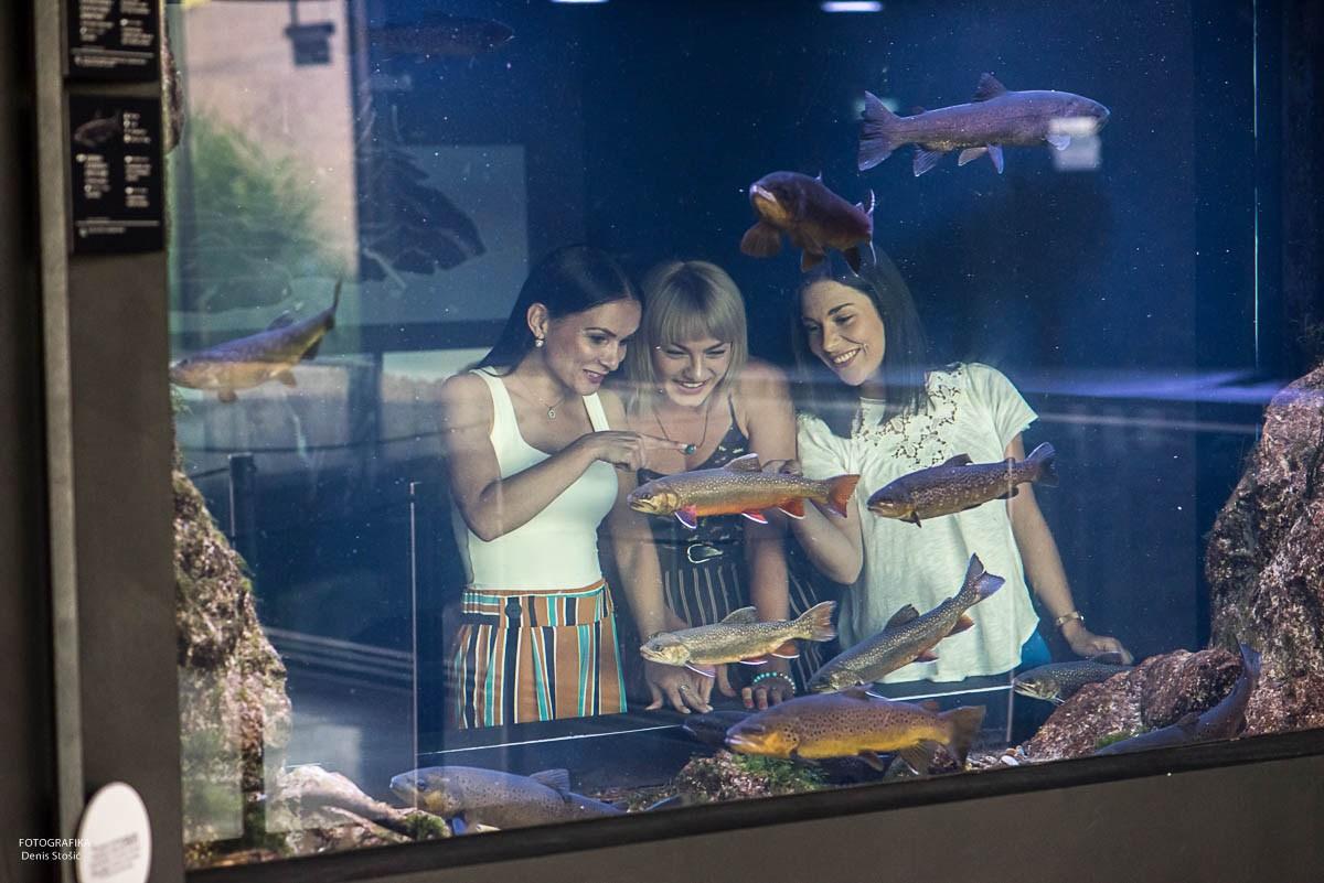 Dekleta za akvarijem, foto Denis Stošić