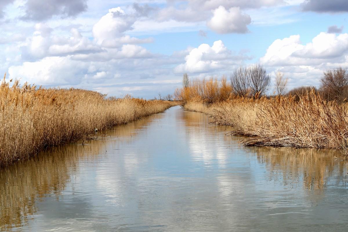 Kanal, foto Iva Rogić