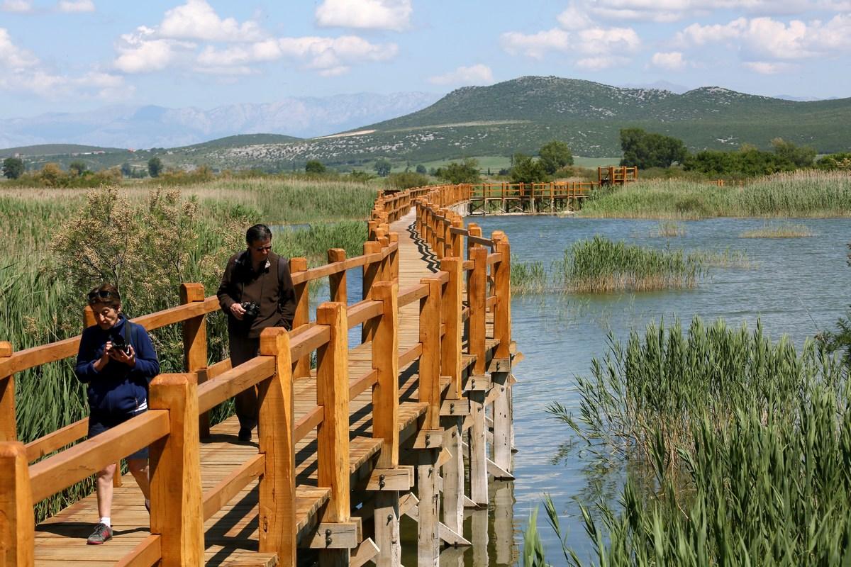 Lesena učna steza, foto Iva Rogić
