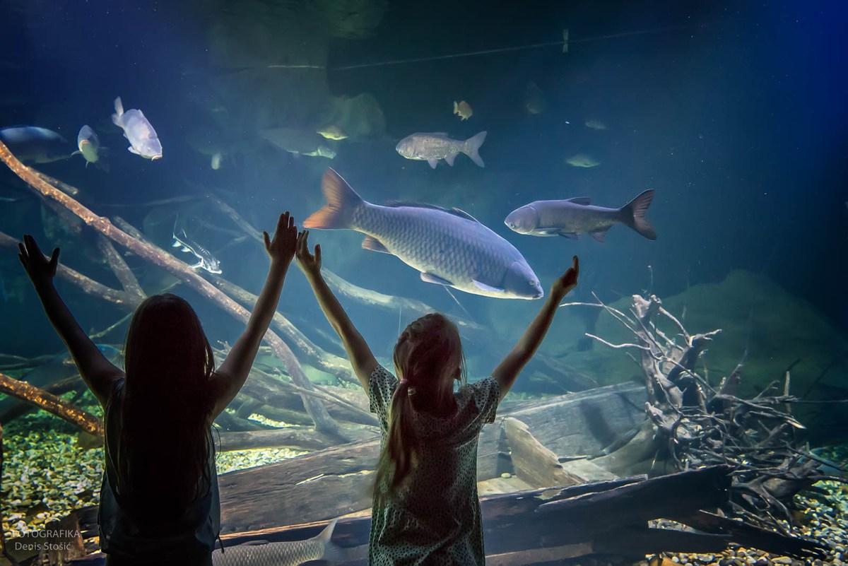 Otroka pred akvarijem, foto Denis Stošić