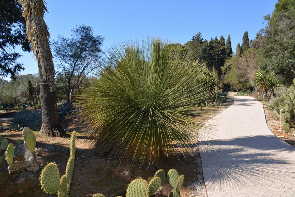 Prenova botaničnega vrta