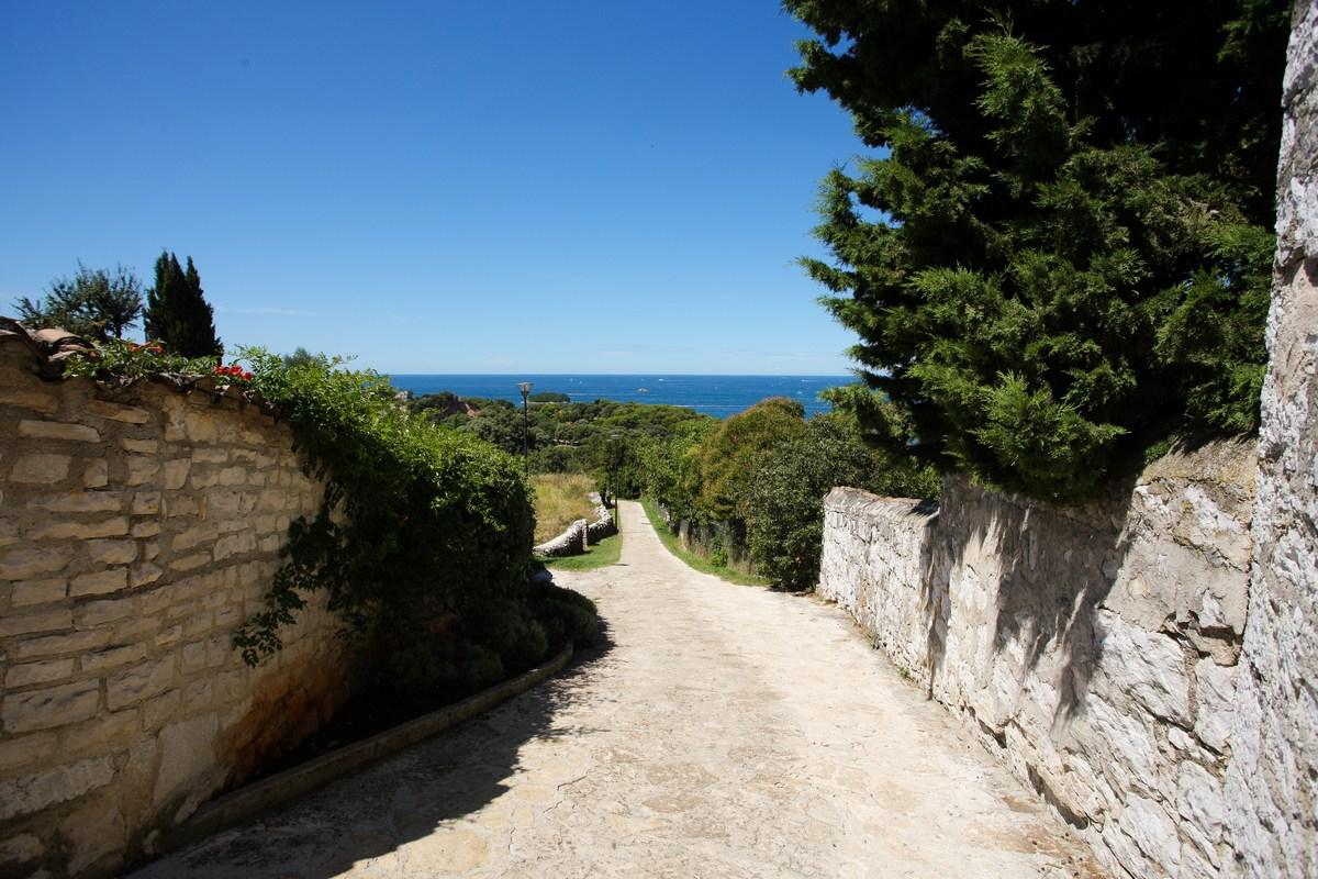 Pot proti morju
