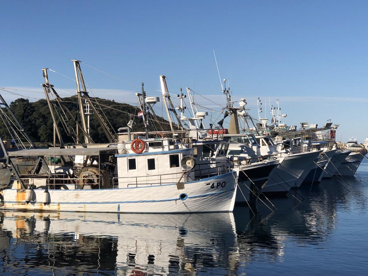 Ribiške ladjice