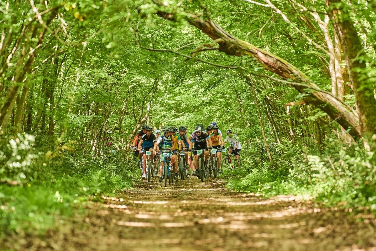 V gozdu, Limes Bike Tour