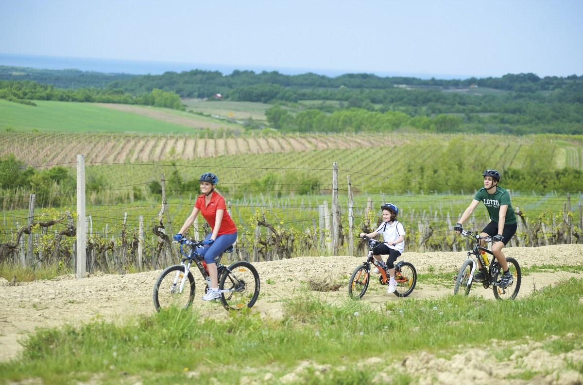 Družinsko kolesarjenje