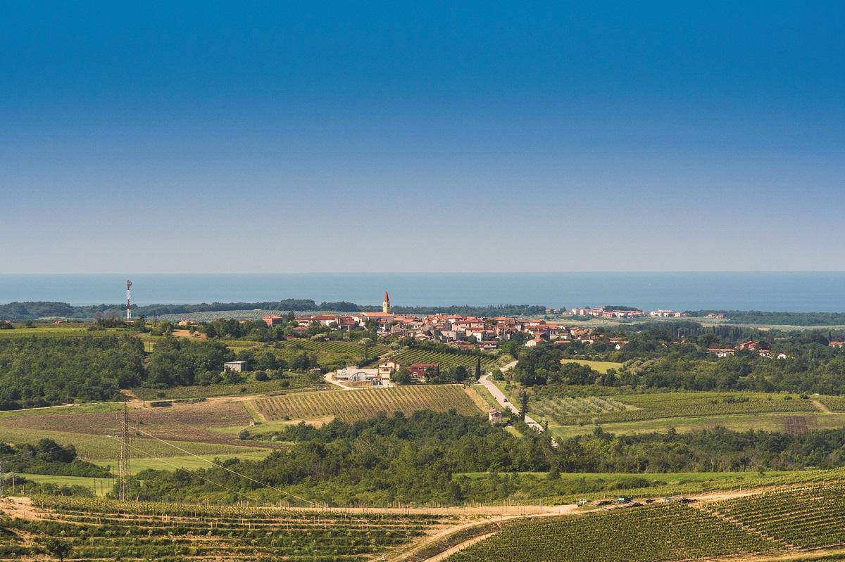 Panorama, Brtonigla