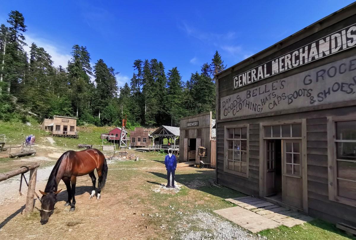 Trgovina, pivnica, konj