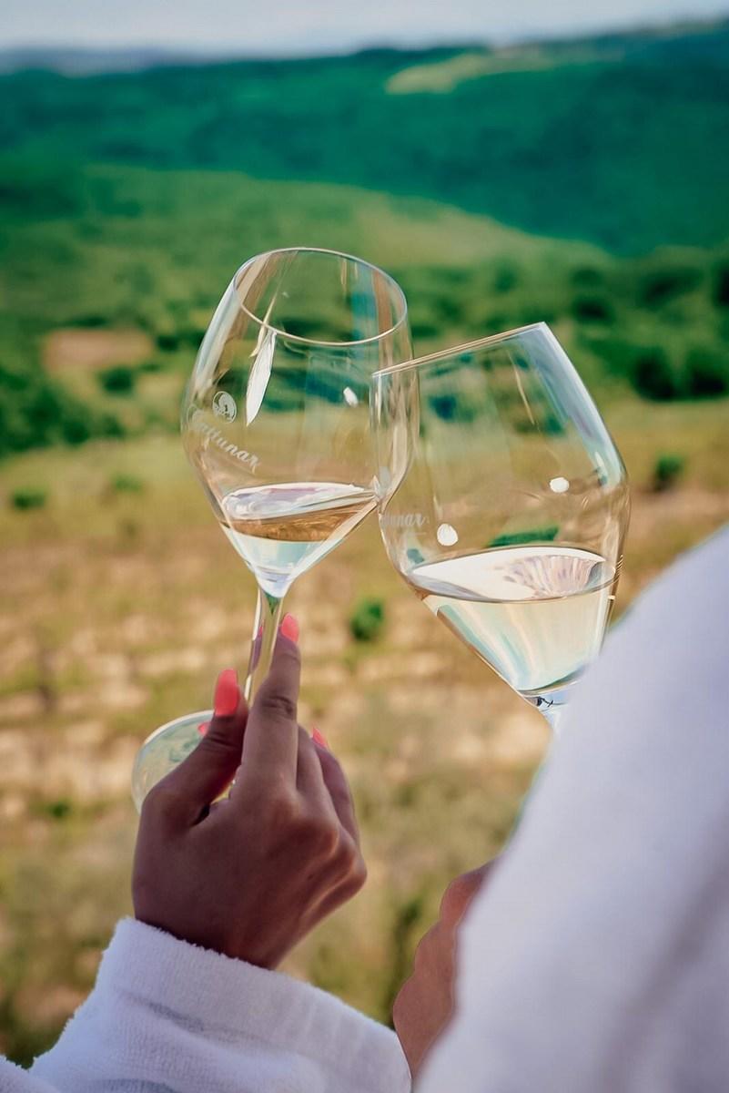 Vinsko razvajenje