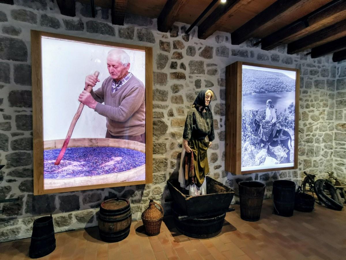 Muzej vinarstva 29