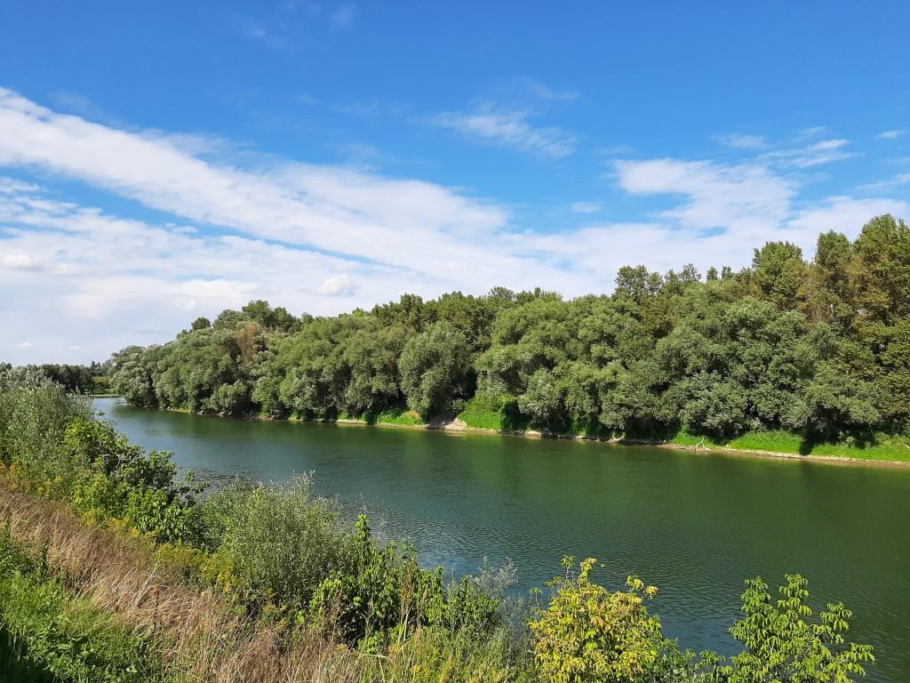 011 Rijeka Sava pogled iz Desnog Trebarjeva)